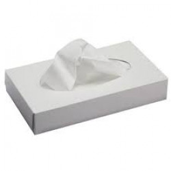 ^PREMIUM - FACIAL TISSUES 100'S 2PLY - EACH